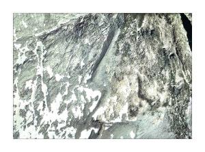 Figura 4. Imagen de la morrena en la ortofoto de Google Earth. En el sentido del desplazamiento del glaciar, la estructura toma una dirección NNE. (Hacer click sobre la imagen para ver una versión ampliada).