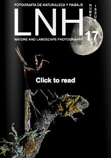 LNH17