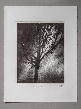 Shadow#1 - Plate 20x25cm