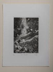 Low tide#2 - Plate 16.5x23cm - Paper 28x38cm