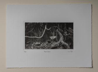 Roots#1 - Plate 13.5x23cm - Paper 28x38cm