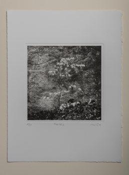 Tree#1 - Plate 20x20cm - Paper 28x38cm